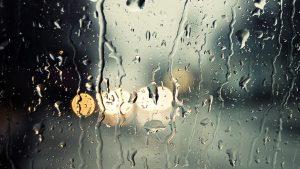 jak przewidzieć pogodę, pogoda obserwacja pogody, kiedy pada deszcz, kiedy świeci słońce, przewidywanie pogody stare sposoby, przewidywanie pogody owady, przewidywanie pogody ptaki, przewidywanie pogody dym