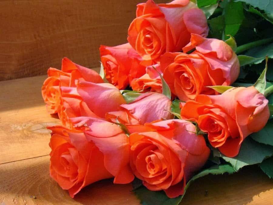 Jak przedłużyć trwałość kwiatów ciętych