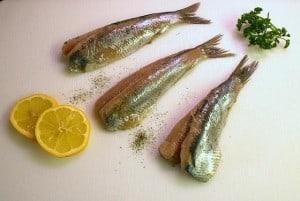 jak kupić świeżą rybę, jak wygląda świeża ryba, gdzie kupować ryby, ryby najzdrowsze, świeża ryba oczy, świeża ryba skrzela, świeża ryba skóra, ryby szkodliwe dla zdrowia