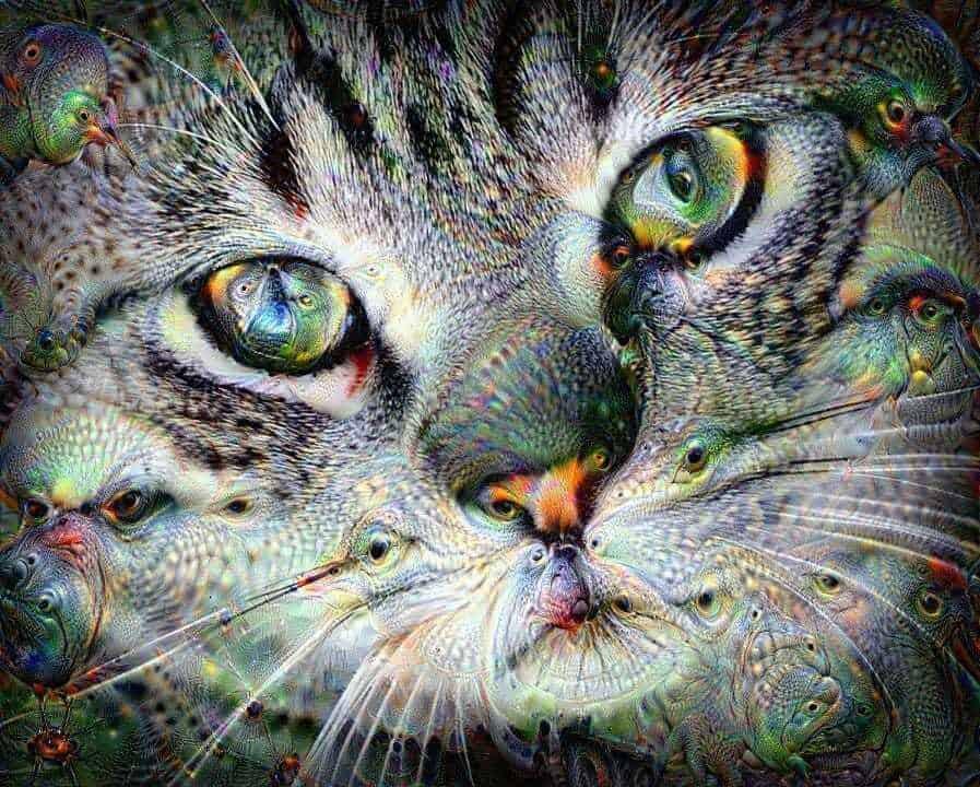 efekty graficzne, darmowe efekty nazdjęcia, efekty graficzne on-line, strony zefektami graficznymi, zdjęcia jak polsd, lsd obrazy, deep dream generator, jak Google widzą obrazy, graphics effects on-line, generator lsd, surrealistyczne efekty graficzne, efekt głębokiego snu obrazy, generator głębokiego snu