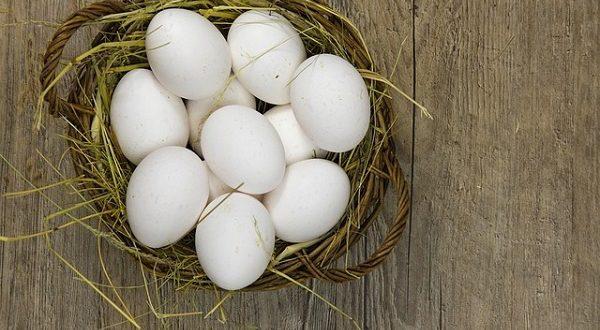 Nietypowe zastosowania jajek