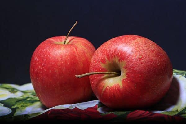 Muszki owocówki - jak się pozbyć, jak się zabezpieczyć